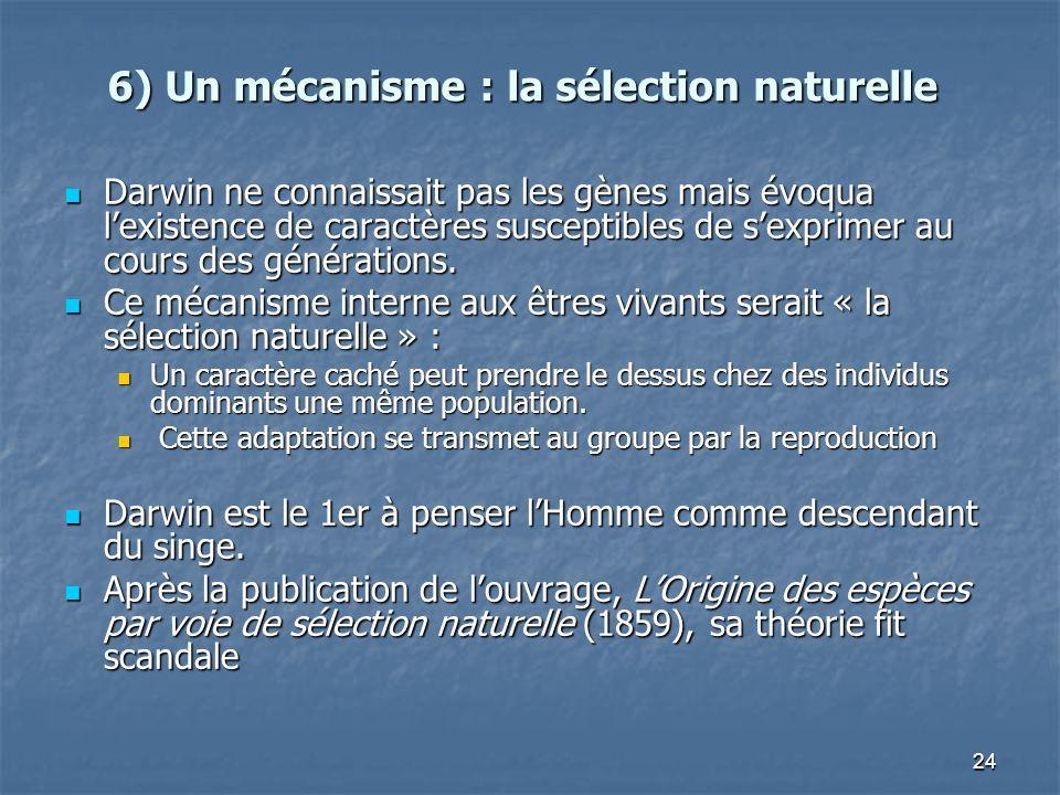 6) Un mécanisme : la sélection naturelle