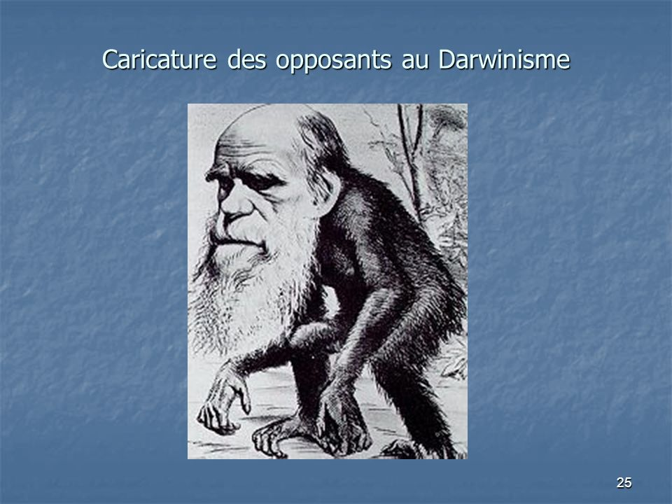 Caricature des opposants au Darwinisme