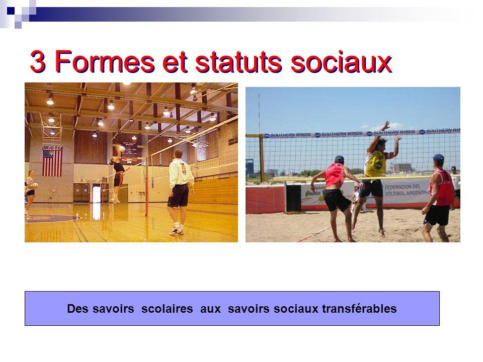 3 Formes et statuts sociaux