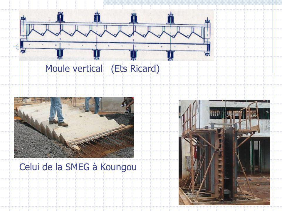 Moule vertical (Ets Ricard) Celui de la SMEG à Koungou