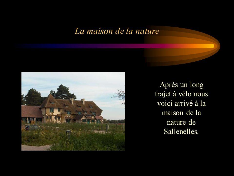 La maison de la nature Après un long trajet à vélo nous voici arrivé à la maison de la nature de Sallenelles.