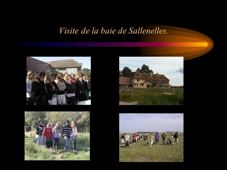 Visite de la baie de Sallenelles.