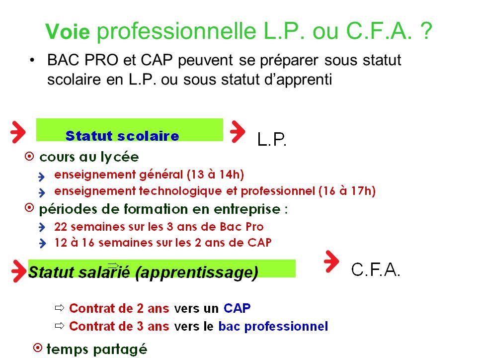 Voie professionnelle L.P. ou C.F.A.