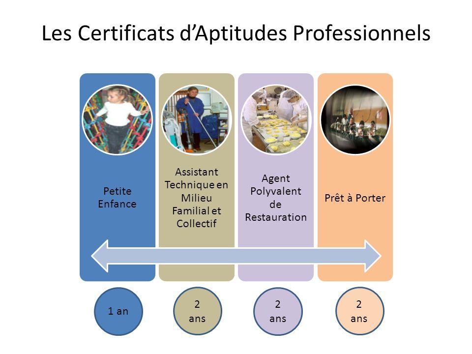 Les Certificats d'Aptitudes Professionnels