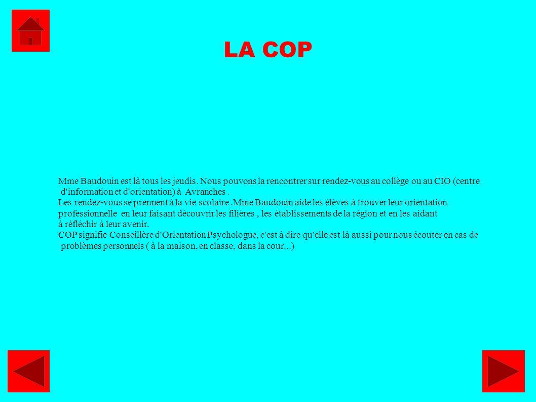 LA COP Mme Baudouin est là tous les jeudis. Nous pouvons la rencontrer sur rendez-vous au collège ou au CIO (centre.