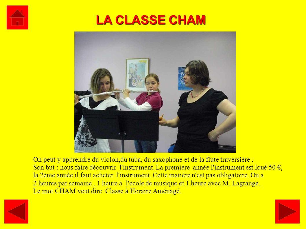 LA CLASSE CHAM On peut y apprendre du violon,du tuba, du saxophone et de la flute traversière .