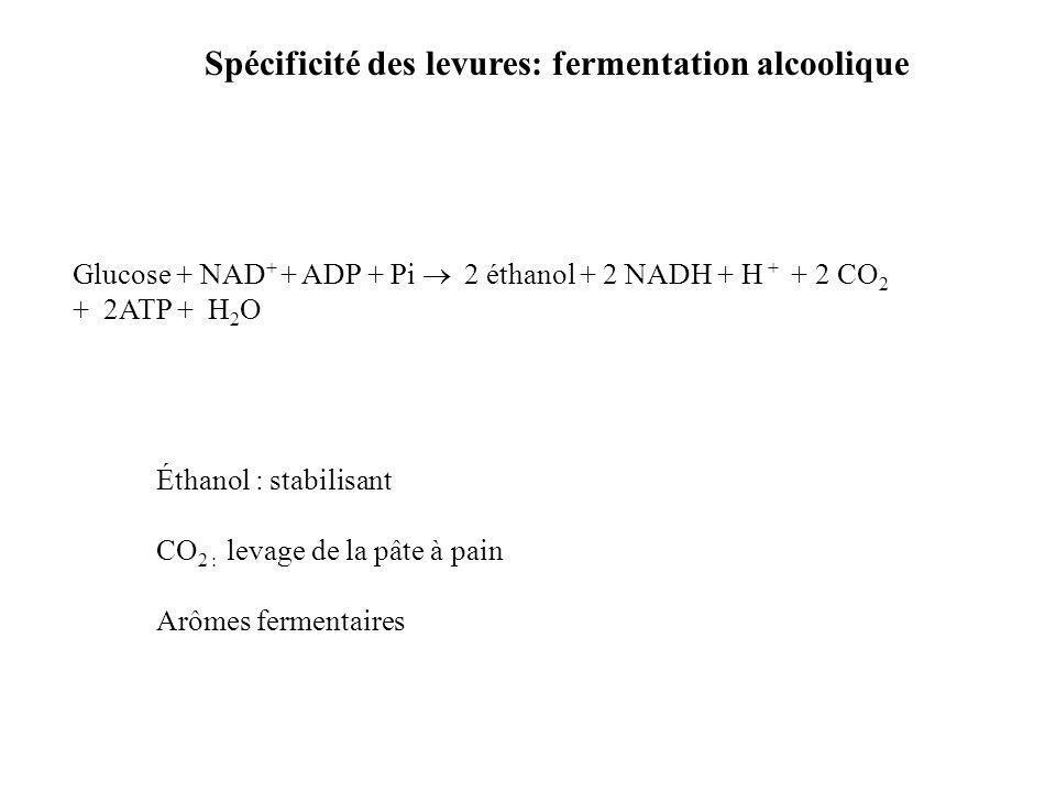 Spécificité des levures: fermentation alcoolique