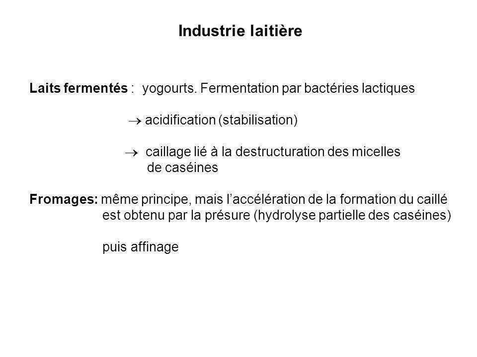 Industrie laitière Laits fermentés : yogourts. Fermentation par bactéries lactiques  acidification (stabilisation)