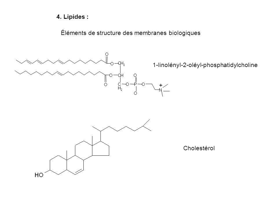 Éléments de structure des membranes biologiques