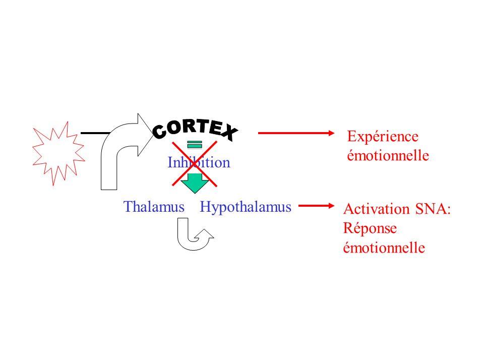 Expérience émotionnelle. CORTEX. Thalamus. Hypothalamus. Inhibition. Activation SNA: Réponse.