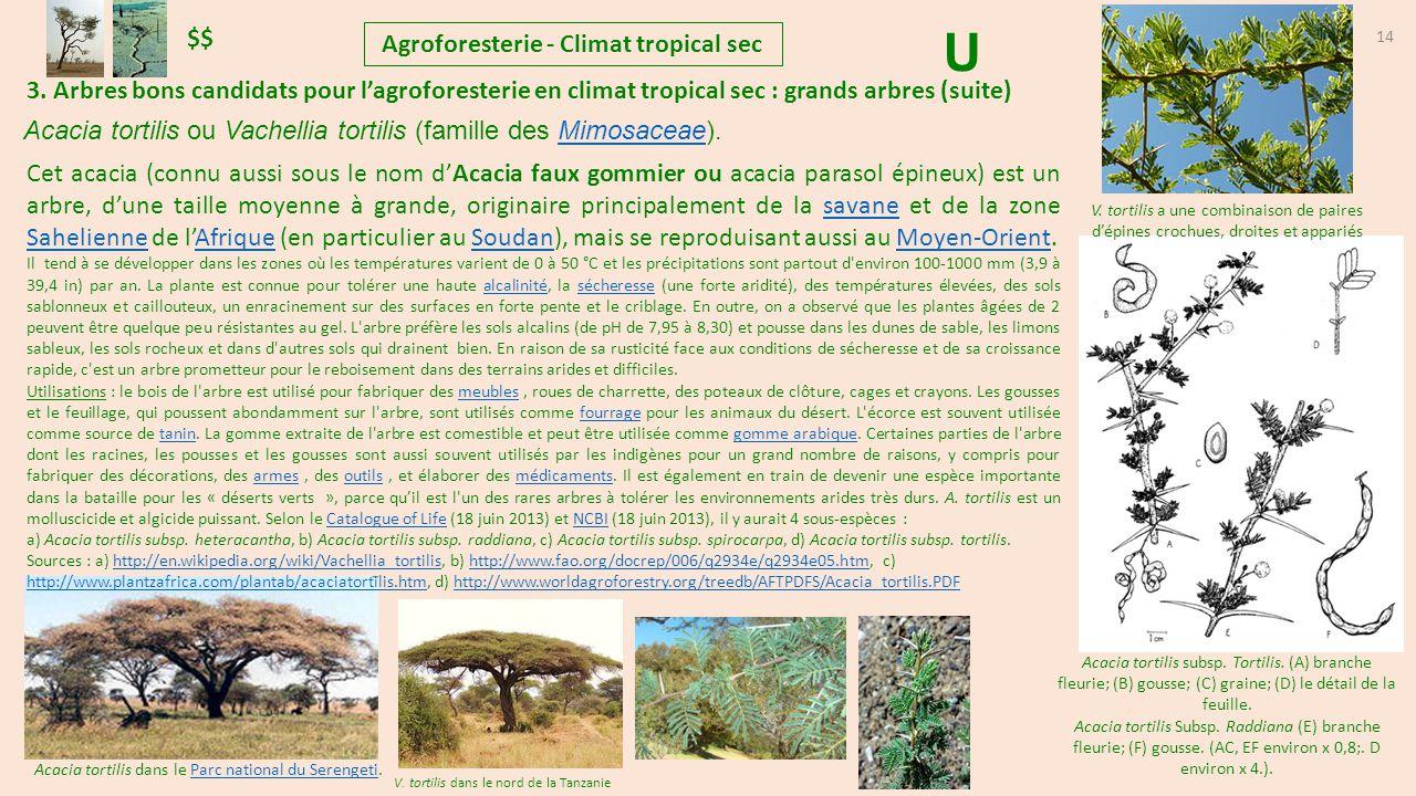 Agroforesterie climat tropical sec ppt t l charger - La grange du bien etre vendegies au bois ...