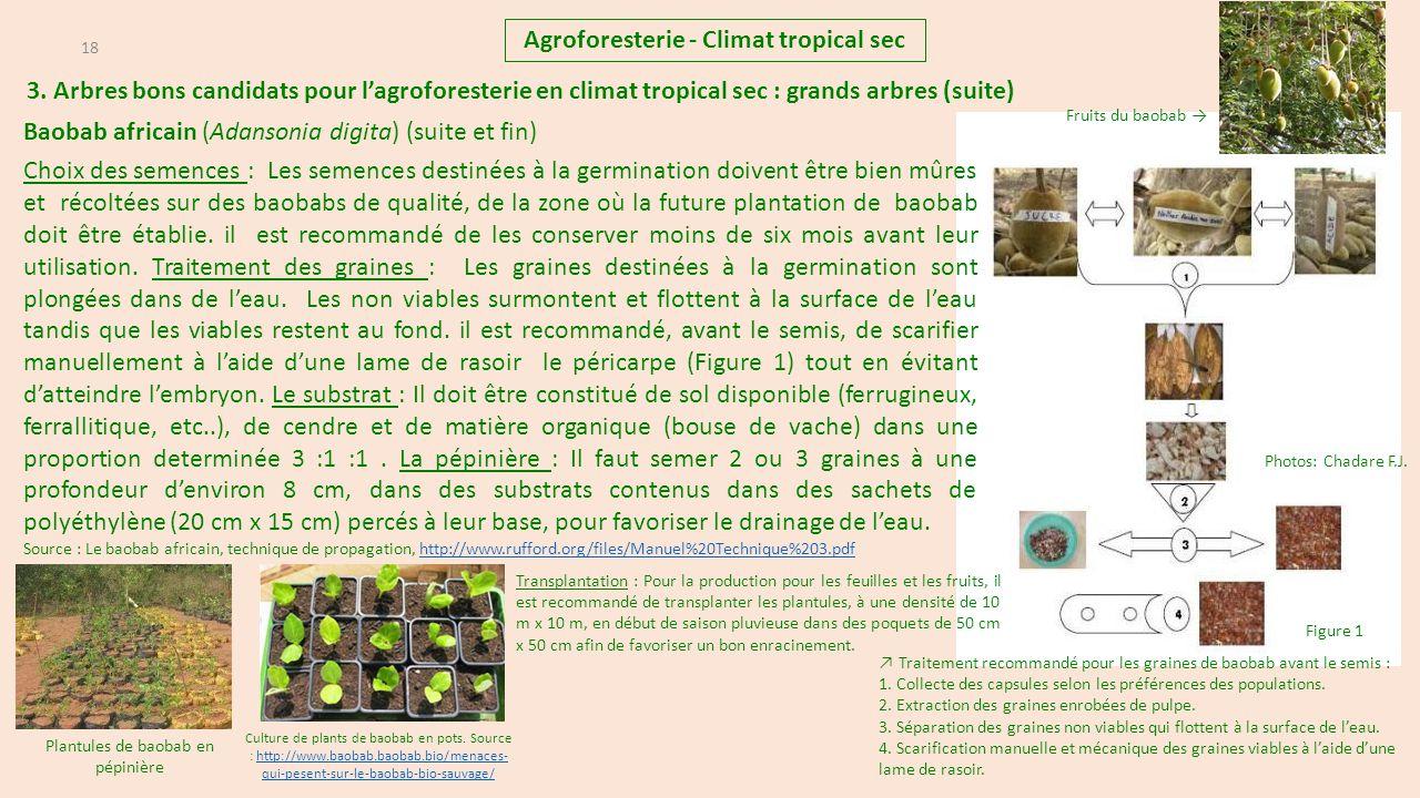agroforesterie climat tropical sec ppt t l charger. Black Bedroom Furniture Sets. Home Design Ideas