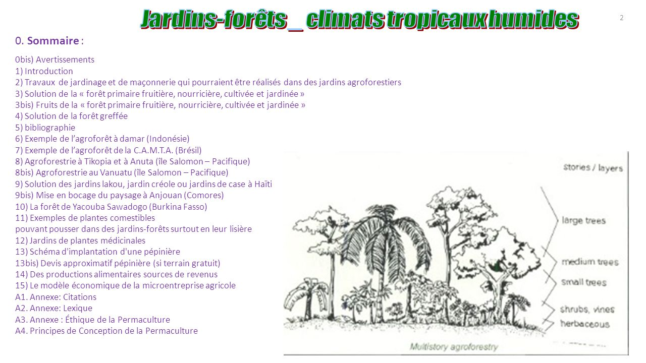 Agroforesterie tropicale agro for ts ppt t l charger for Devis jardinage exemple