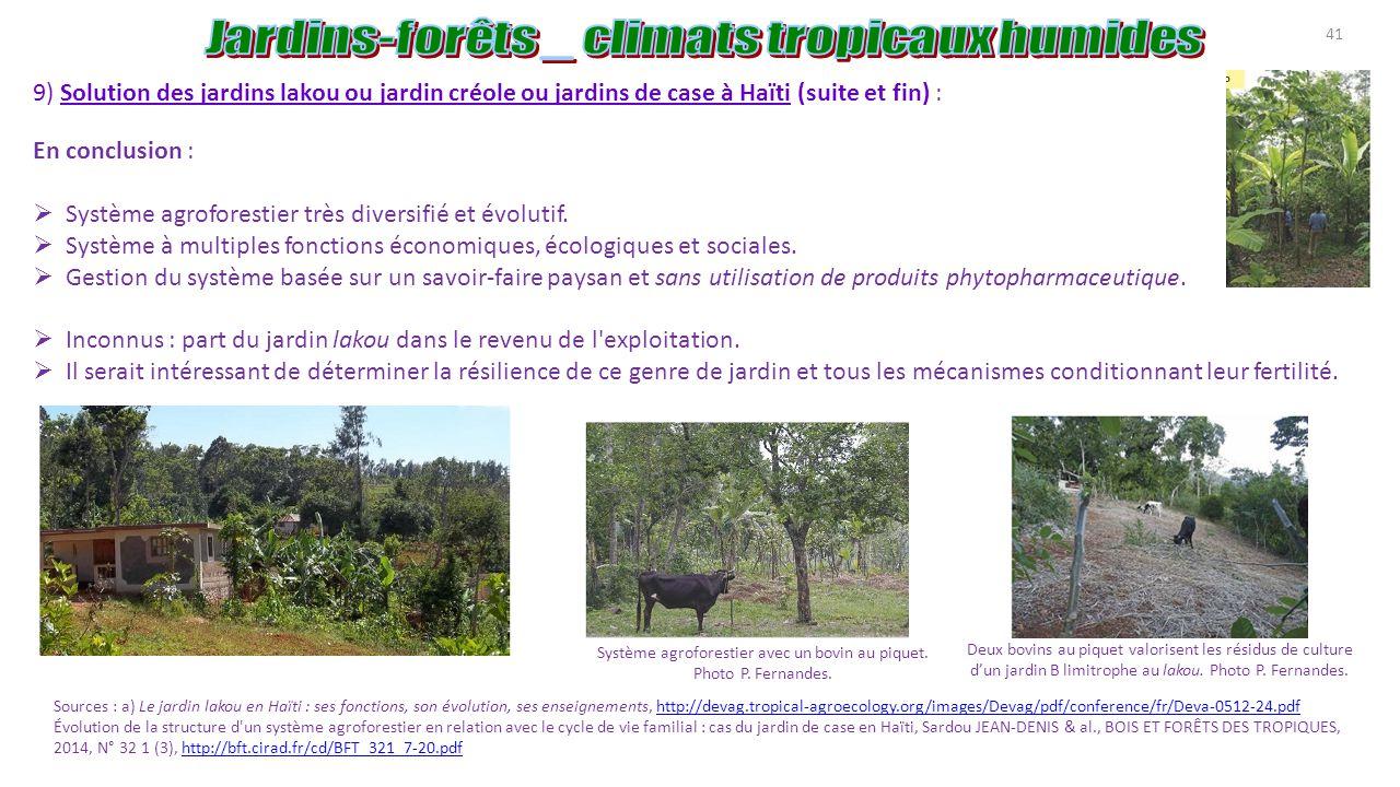 Agroforesterie tropicale agro for ts ppt t l charger - Utilisation de la sciure de bois au jardin ...