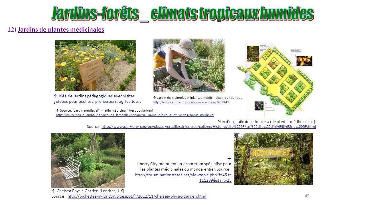 Agroforesterie tropicale agro for ts ppt t l charger - College du jardin des plantes ...