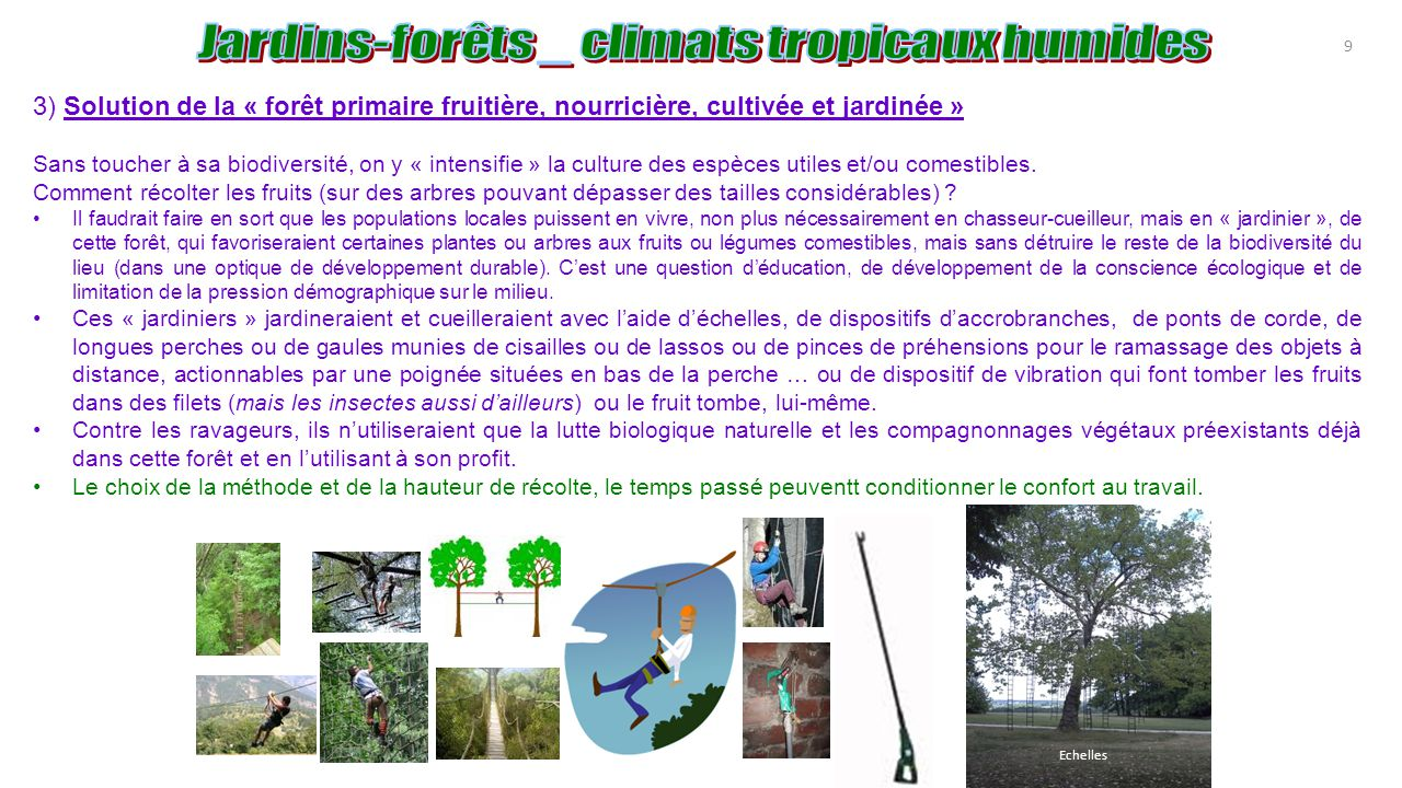 Agroforesterie tropicale agro for ts ppt t l charger - Comment se passe une fausse couche naturelle ...