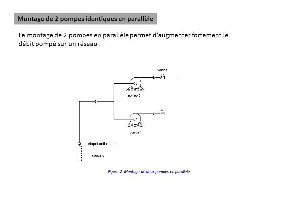 Figure 2- Montage de deux pompes en parallèle