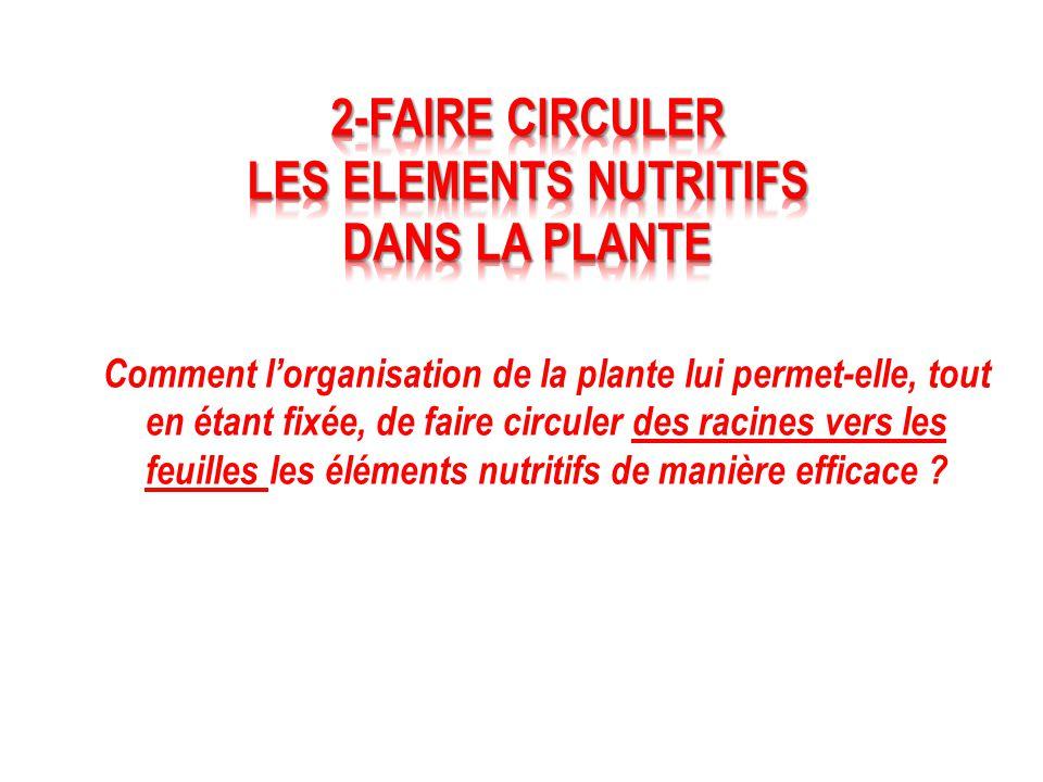 LES ELEMENTS NUTRITIFS