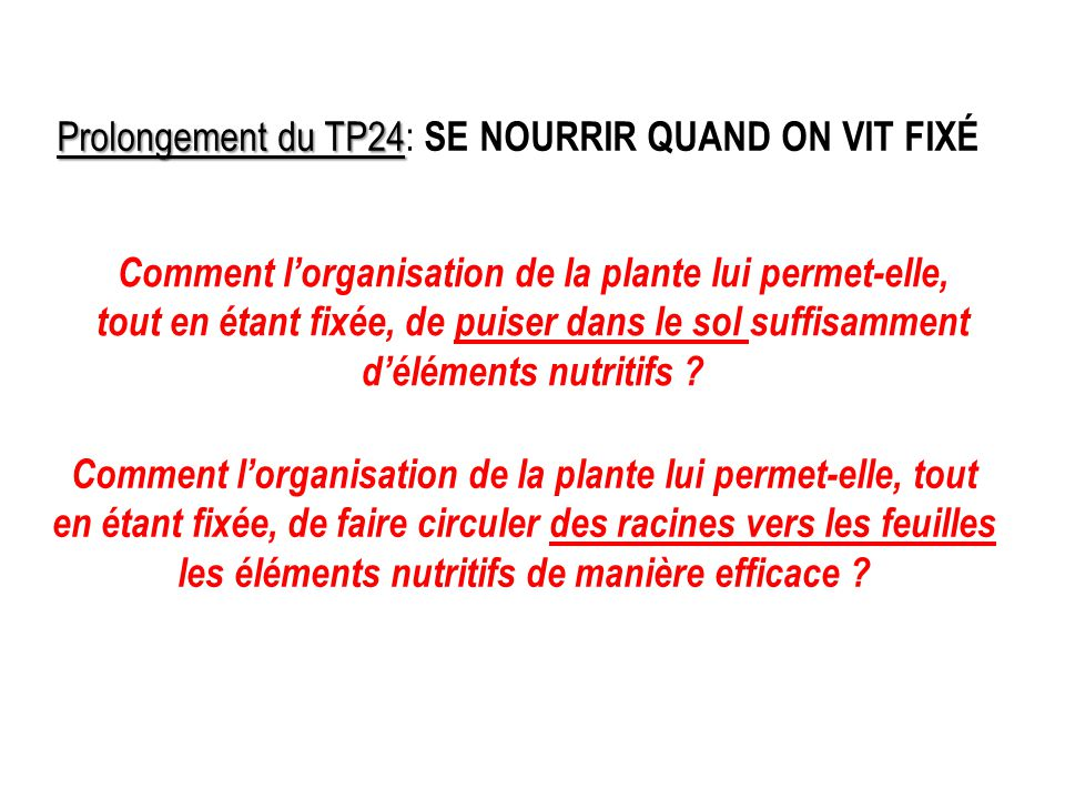 Prolongement du TP24: SE NOURRIR QUAND ON VIT FIXÉ