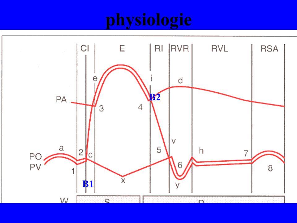 physiologie B2 B1
