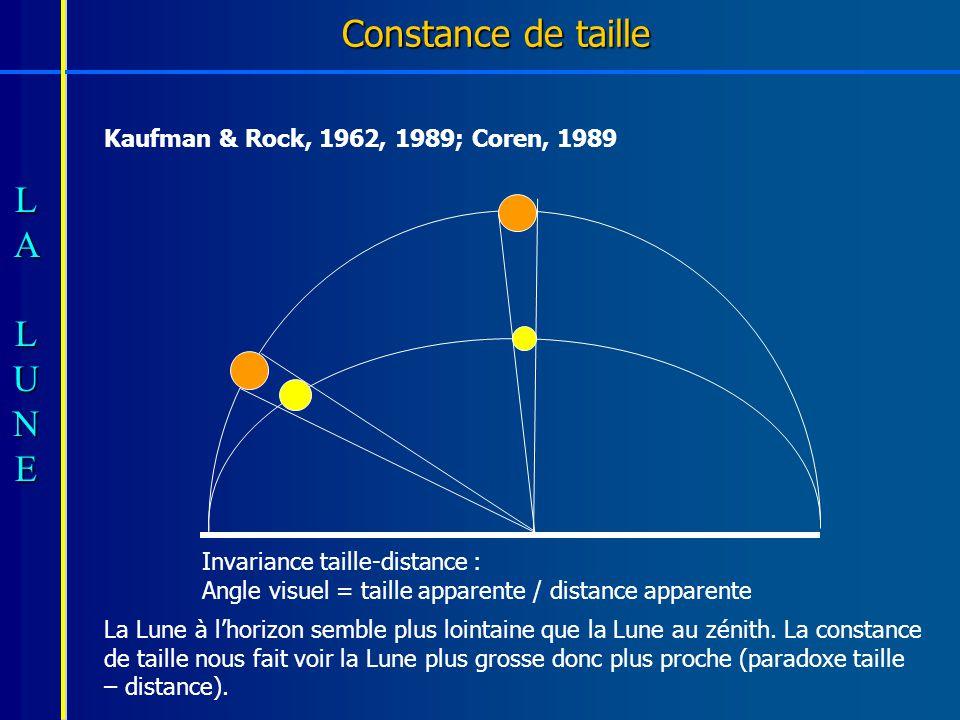 Constance de taille Kaufman & Rock, 1962, 1989; Coren, 1989