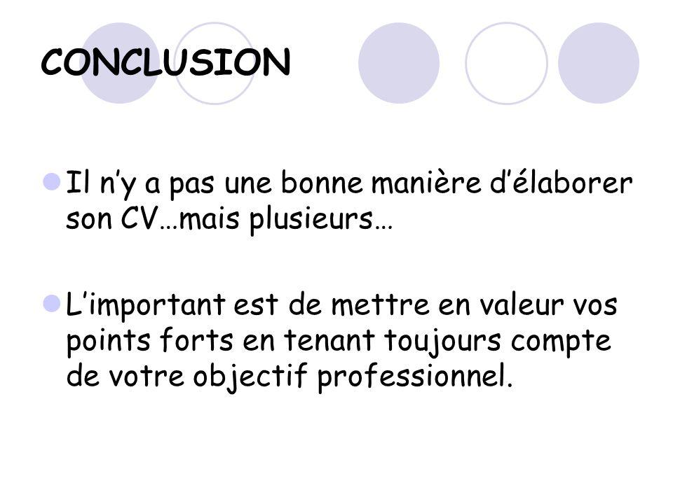 curriculum vitae mode d u2019emploi
