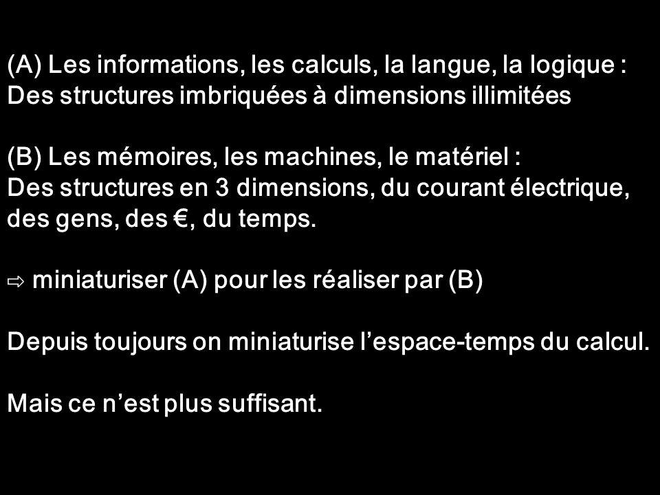 (A) Les informations, les calculs, la langue, la logique :