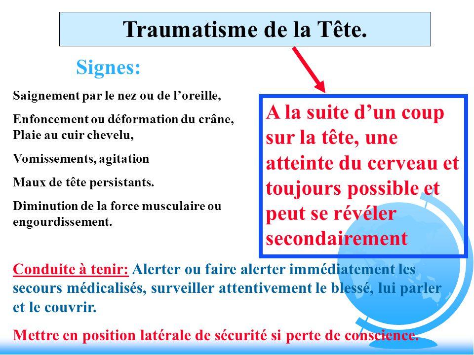 premier secours niveau 1 pdf