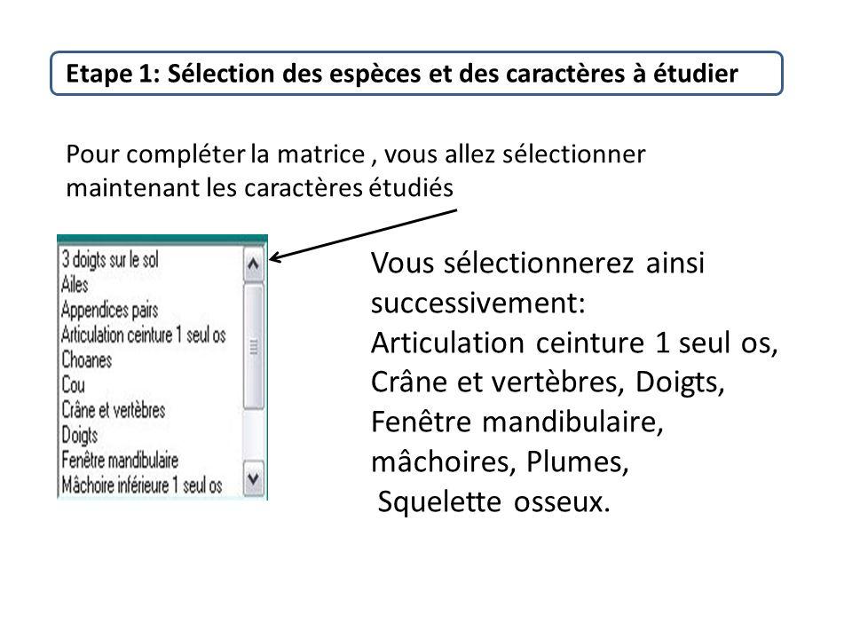 Plan etape 1 s lection des esp ces et des caract res for Fenetre mandibulaire