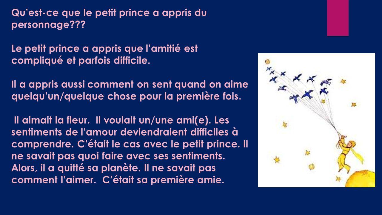 Qu'est-ce que le petit prince a appris du personnage