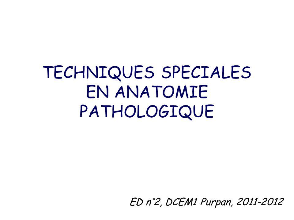 TECHNIQUES SPECIALES EN ANATOMIE PATHOLOGIQUE