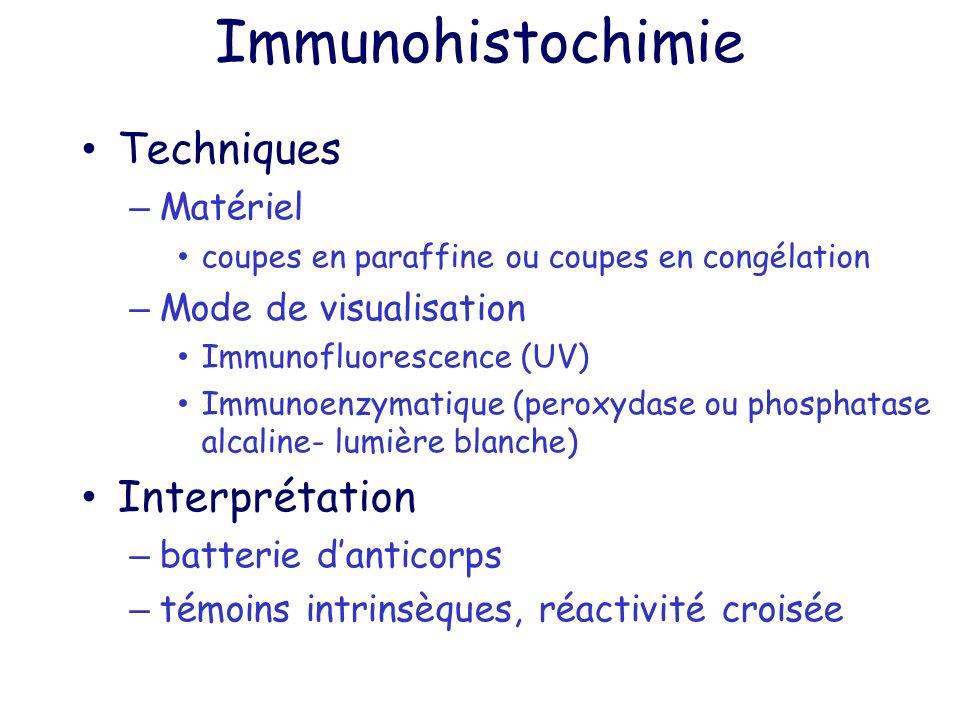 Immunohistochimie Techniques Interprétation Matériel