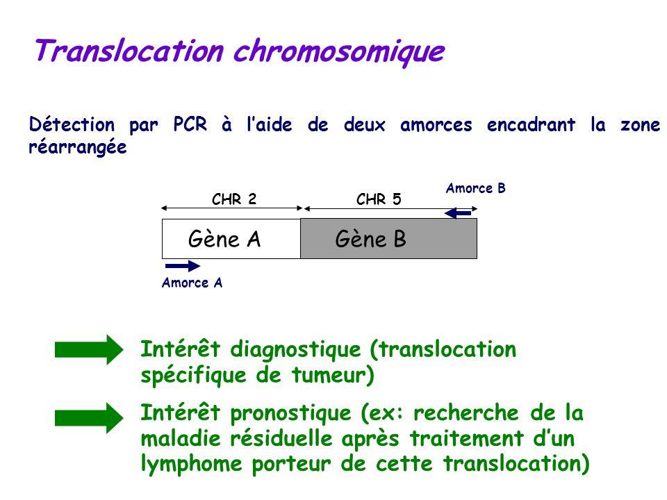 Translocation chromosomique