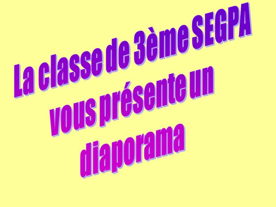 La classe de 3ème SEGPA vous présente un diaporama
