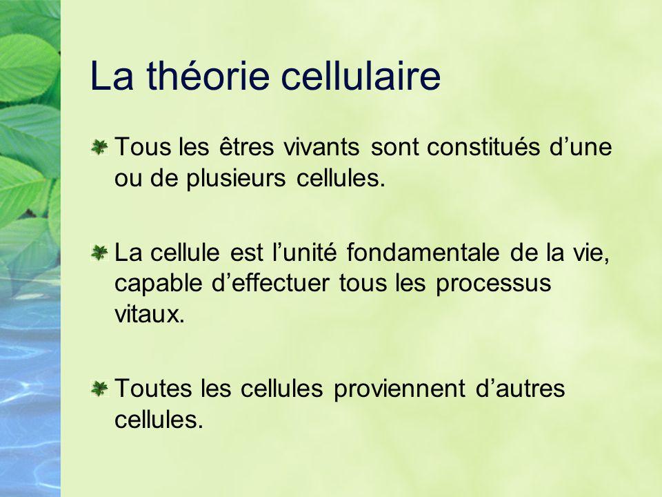La théorie cellulaire Tous les êtres vivants sont constitués d'une ou de plusieurs cellules.