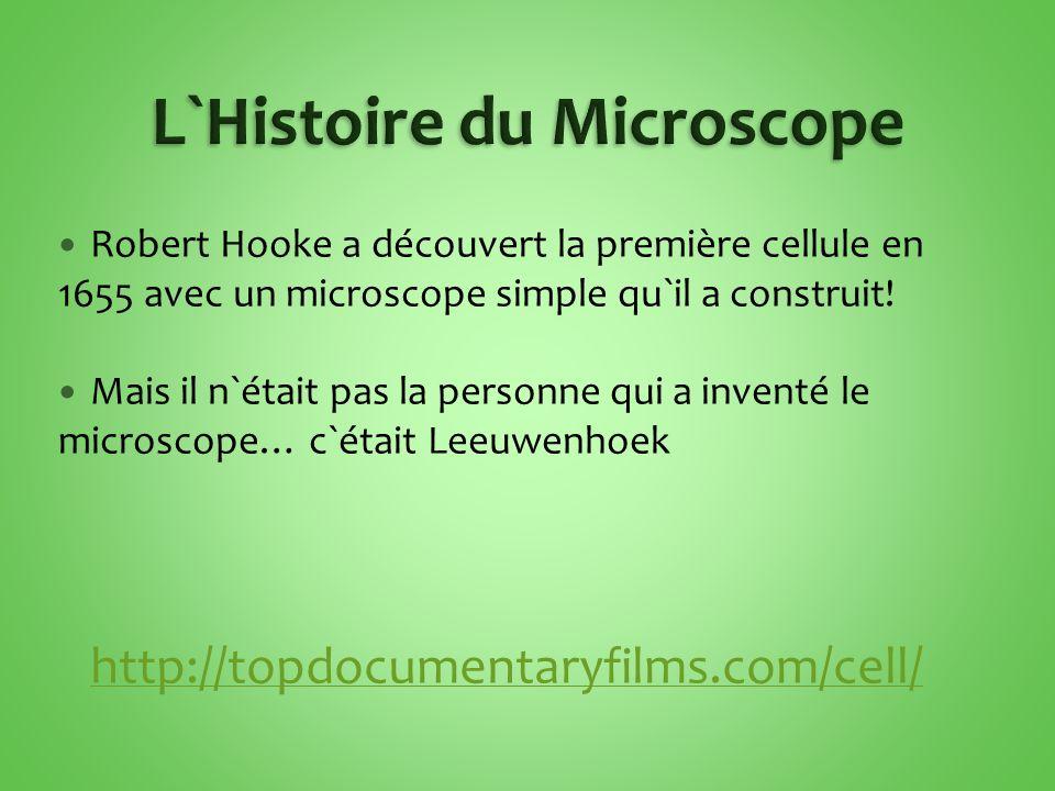 L`Histoire du Microscope