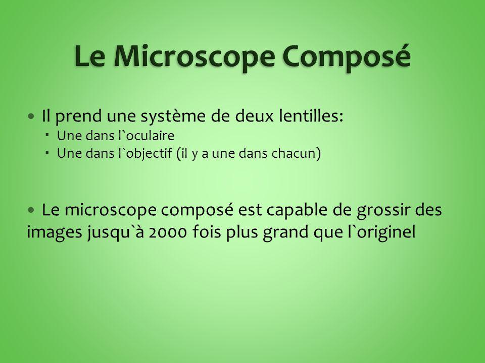Le Microscope Composé Il prend une système de deux lentilles:
