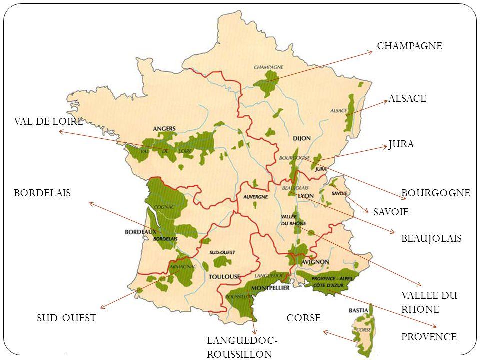 Préférence LES REGIONS VITICOLES FRANCAISES - ppt video online télécharger PQ84