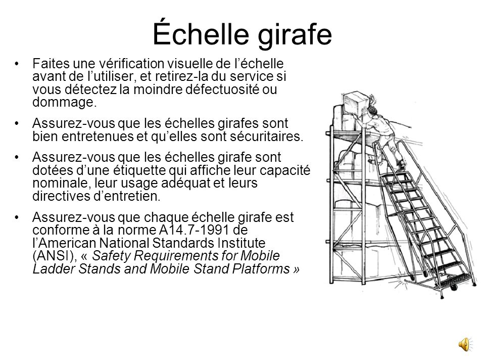 201 Chelles Welcome To The Ladder Safety Training Part Of