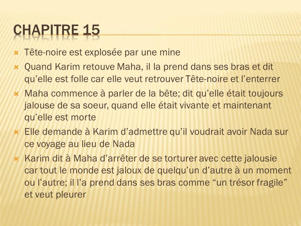 Chapitre 15 Tête-noire est explosée par une mine
