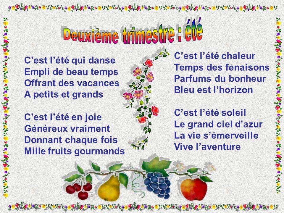 Beliebt TOUTE UNE ANNEE Poèmes de Marie David.C.. - ppt video online  PT35