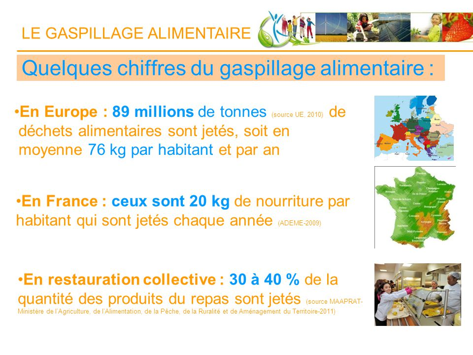 Gaspillage Alimentaire Restauration Collective  Tonnes