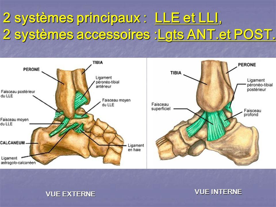 2 systèmes principaux : LLE et LLI, 2 systèmes accessoires :Lgts ANT
