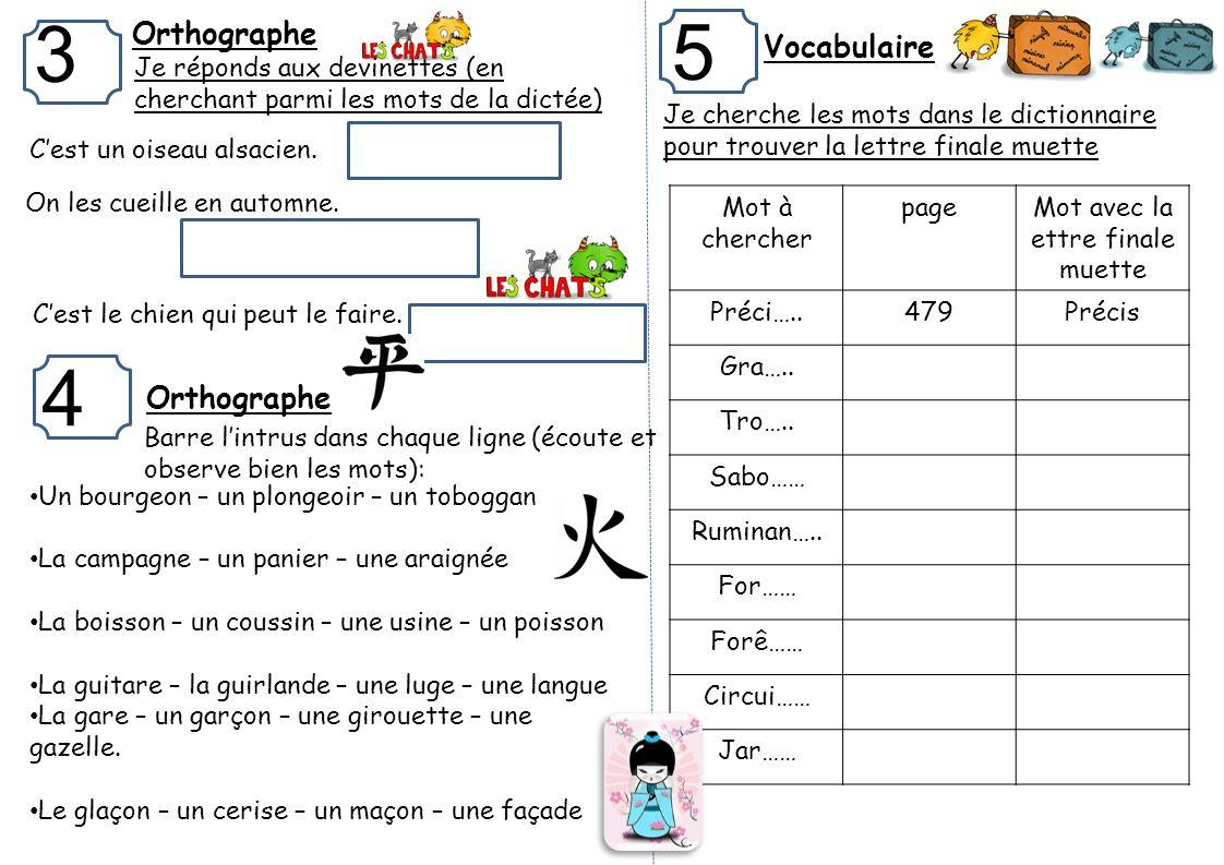 Ce1 francais mathematiques pr nom signature for Dans wiktionnaire