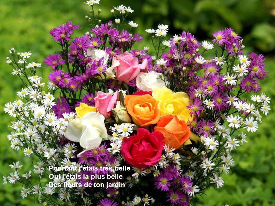 Mon Amie La Rose On est bien peu de chose Et mon amie la rose - ppt ...