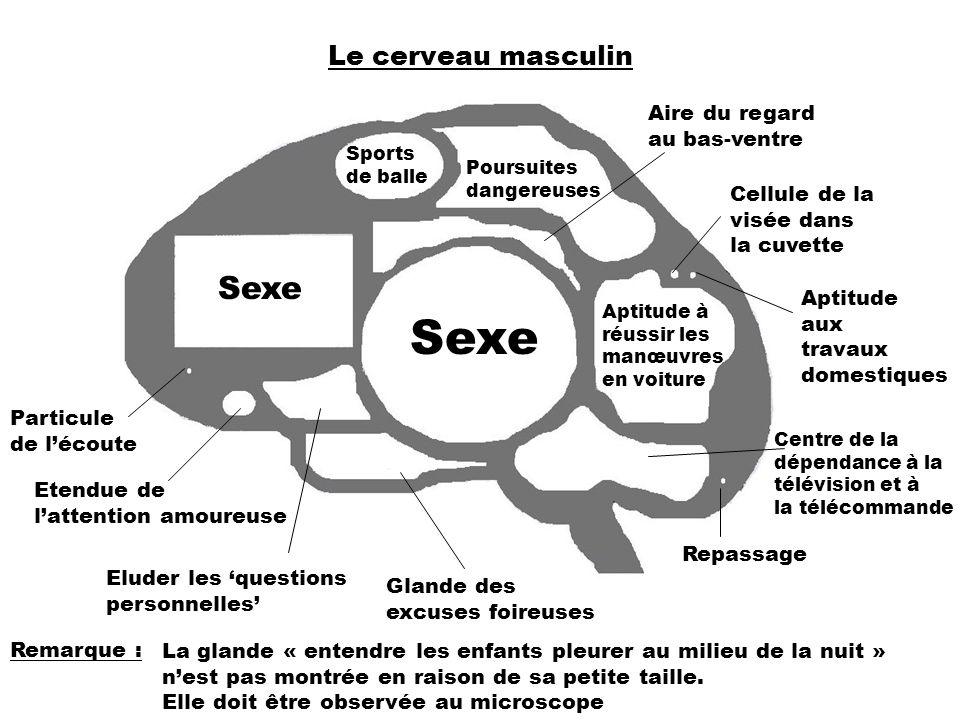 Le dsir sexuel au coeur du cerveau - allodocteursfr
