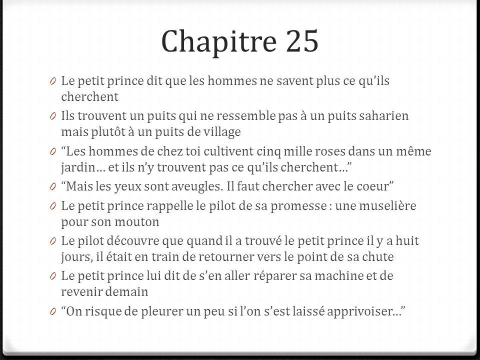 Chapitre 25 Le petit prince dit que les hommes ne savent plus ce qu'ils cherchent.