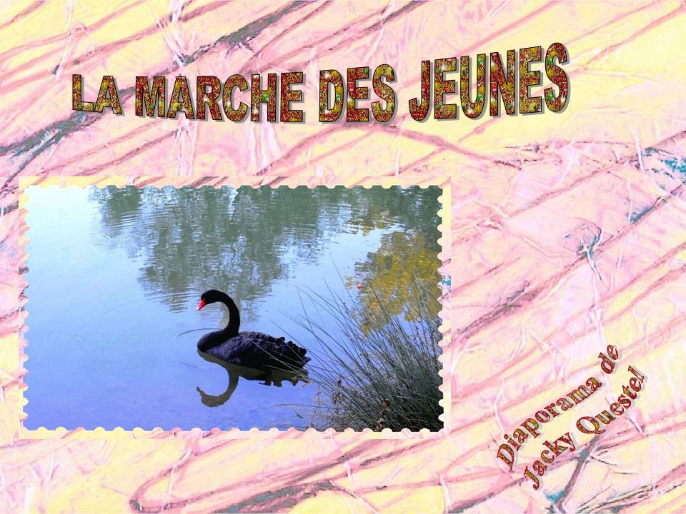 LA MARCHE DES JEUNES Diaporama de Jacky Questel