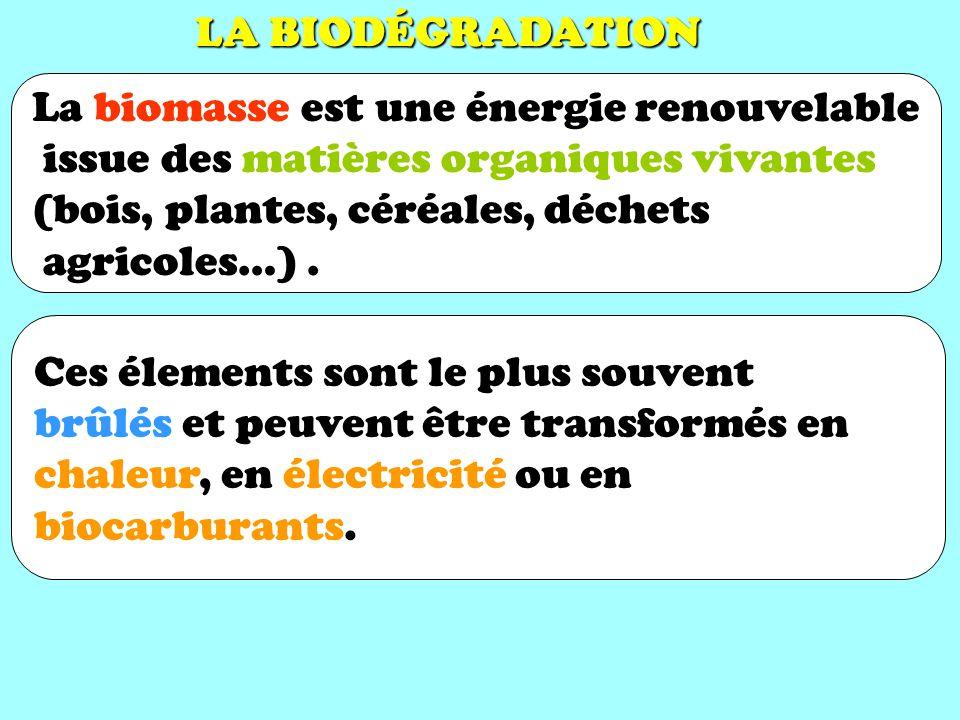 LA BIODÉGRADATION La biomasse est une énergie renouvelable. issue des matières organiques vivantes.