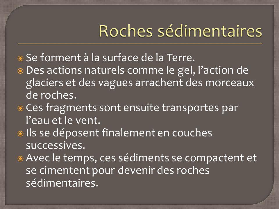 Roches sédimentaires Se forment à la surface de la Terre.